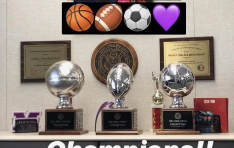 Dominant year for MCHS sports