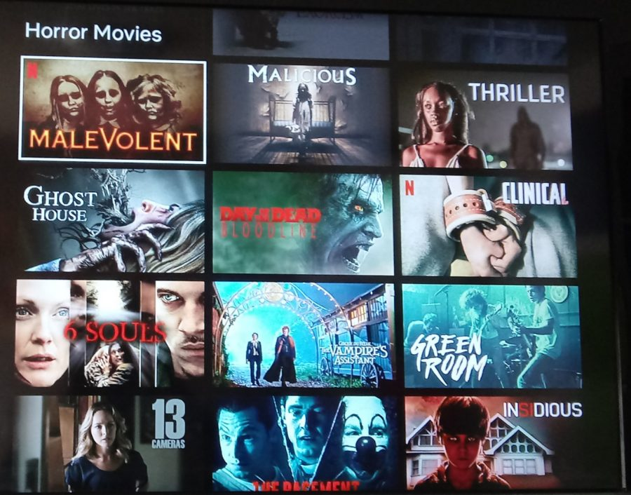 The+streaming+service+Netflix+offers+a+variety+of+horror+movies+for+viewers+to+enjoy%2C+including+Netflix+Original+Movies.