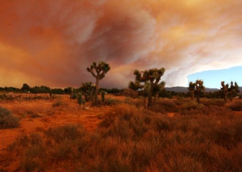 Smoke from the wildfires covers up most of the sky in the Mojave Desert.
