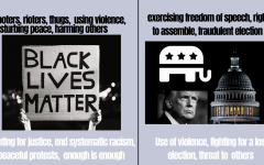 Graphic discusses contrasting views on the BLM Movement protests and Capitol riots.