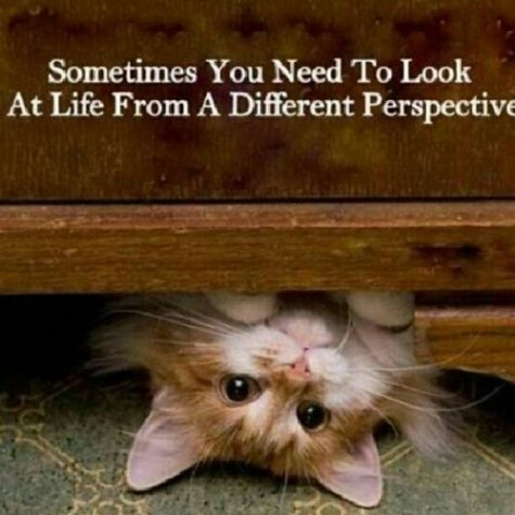 Looking at life from a different and happier perspective rather than a negative one will improve your mental health.